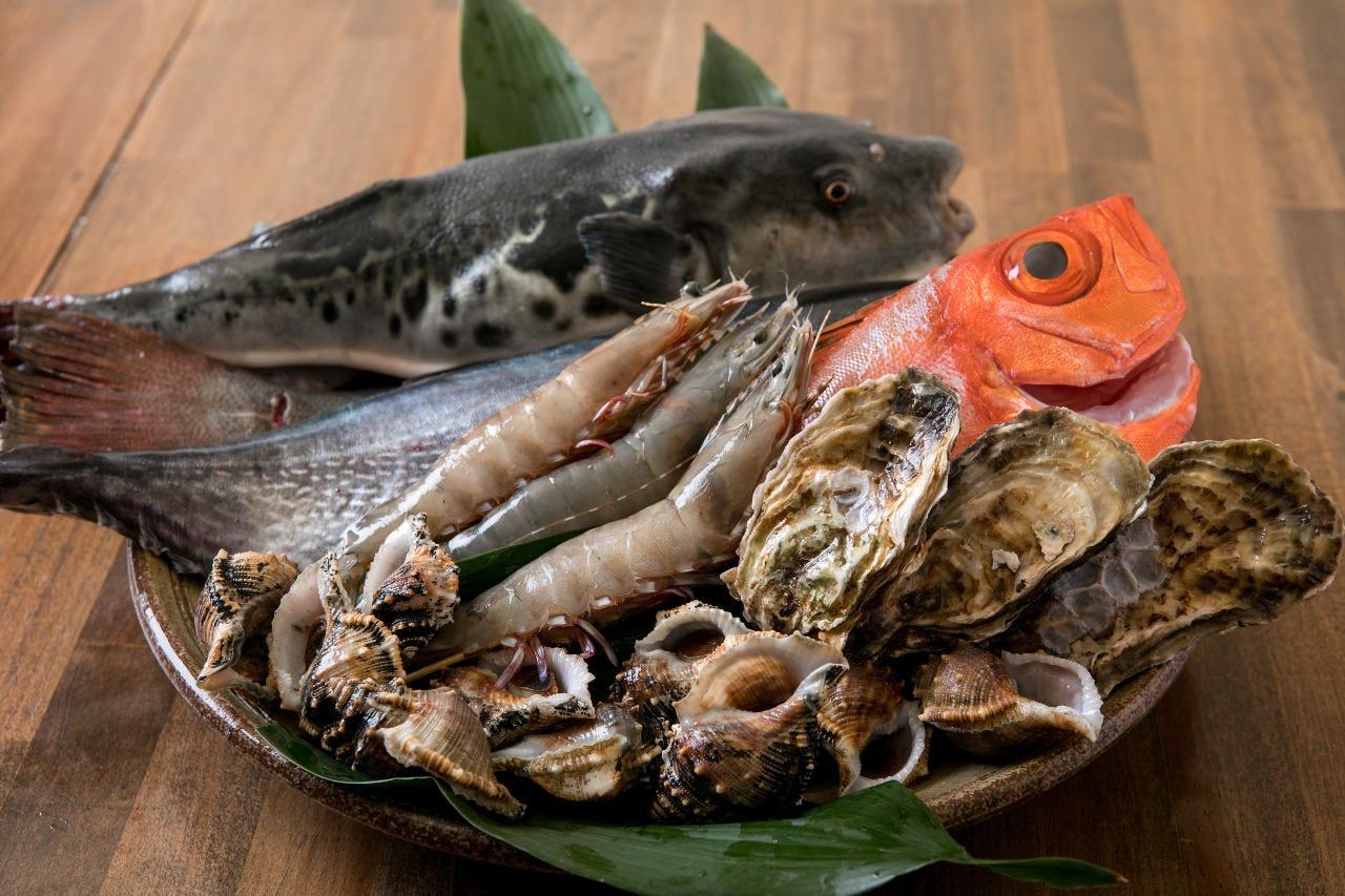 新鮮な魚介をコースで堪能して下さい!
