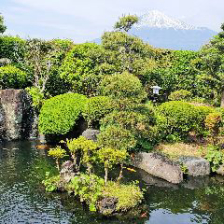 庄屋屋敷と美しい庭園から眺める富士