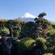 当店から眺める雪化粧の富士山