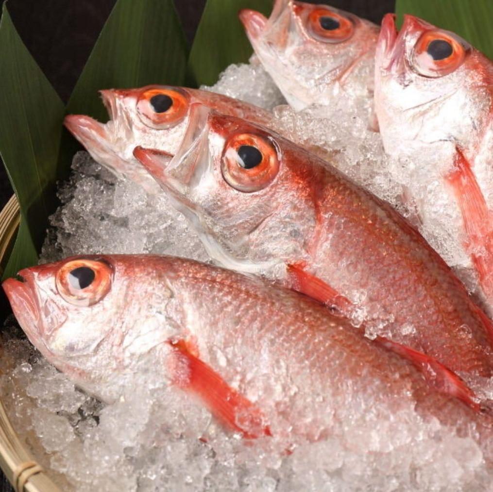直送鮮魚 北陸の「のどぐろ」