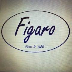 Figaro(フィガロ) 本厚木駅前店