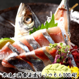 【毎日刺身姿盛り180円(税抜)】 圧倒的仕入れ力により実現!