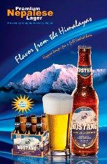 ムスタンビール  Mustang Beer