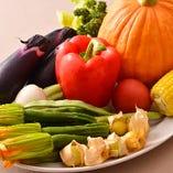 信頼の置ける八百屋さんが契約する千葉の農家さんが作る農園野菜
