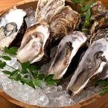 全国各地の旬の生牡蠣【北海道仙鳳趾牡蠣】