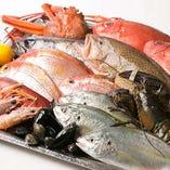 宿毛や函館の新鮮魚介など、厳選食材を使用したスペイン料理。