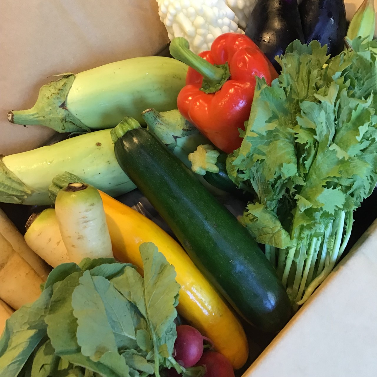 産地直送 有機野菜