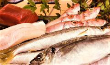 新鮮な魚、質のよい食材