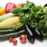 契約農家の有機野菜【千葉県】