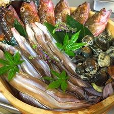 毎日店主が仕入れる瀬戸内鮮魚