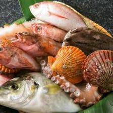 毎朝仕入れる市場直送のお魚
