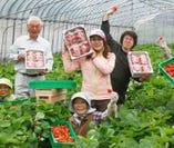 新潟県、弥次郎農園の皆様