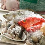 千葉県産を中心に仕入れる新鮮魚介【千葉県を中心】