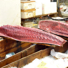 Tsukiji Kagura Sushi Shinkan
