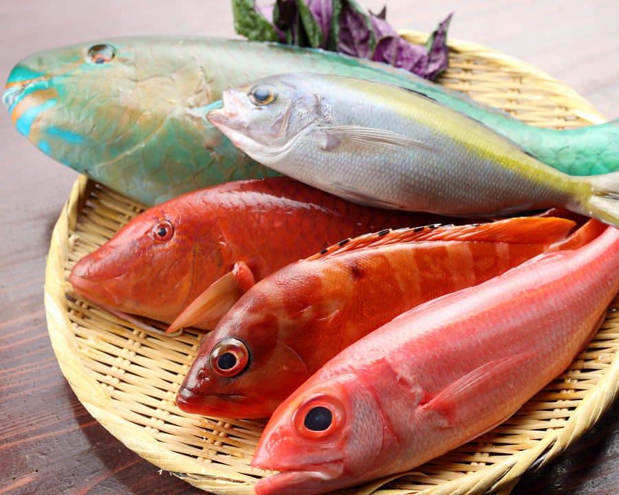 沖縄近海で獲れた鮮魚も 漁港から直送!だから美味しい!