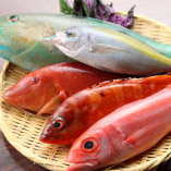 沖縄県産の県魚 産地直送!【沖縄県】