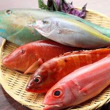 沖縄から毎日直送沖縄鮮魚と島野菜!