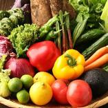 提携農家からの新鮮野菜を仕入れ【十勝郡浦幌町】