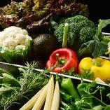 普段から不足がちなお野菜を多く食べていただきたいと思い、沢山の野菜とお魚を中心としたラインナップにしております。