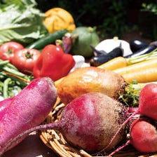 旬の地場野菜などを贅沢に調理します