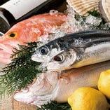 豊洲直送の新鮮な魚!!【豊洲市場】