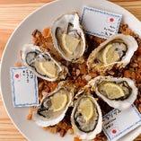 牡蠣にこだわる本格Oyster Bar!!【豊洲市場】