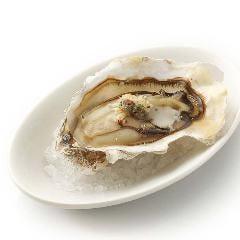 【定番オススメ】アンチョビとガーリックの焼き牡蠣