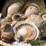 築地の目利きが厳選した活貝。貝は鮮度が命!