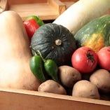 長万部畑作生産組合からのお野菜【北海道】