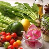 【OTHERS】野菜をたっぷり摂れるサラダバー