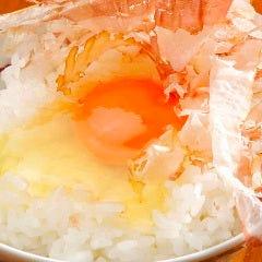 卵の醍醐味!卵かけごはん 猫まんま風