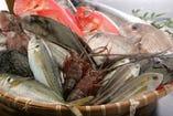 鮮度抜群の地魚だから、シンプルが一番!