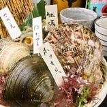 産地にこだわった新鮮海鮮料理をご堪能ください!