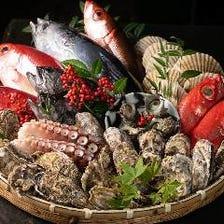 高知から届く魚をとびきりの鮮度で