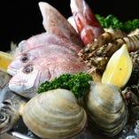 伊良湖・能登の漁港で漁師から直接仕入れた鮮魚。