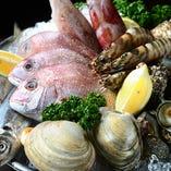 漁港直送の鮮魚【伊良湖】