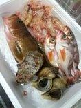 旬な魚を仕入れ、心をこめて調理しております。
