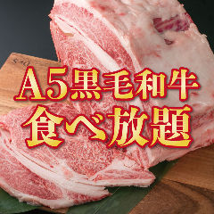 A5黒毛和牛 炭火焼肉食べ放題 肉々苑 新宿店