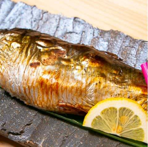 産地直送の希少な魚をご用意◎