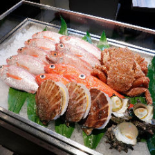 季節を感じる旬の鮮魚や食材に舌鼓!