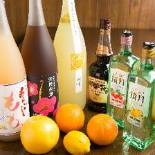 『単品飲み放題♪』90分1,500円!
