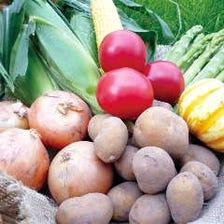 栄養満点のどさんこ野菜!免疫力UP!
