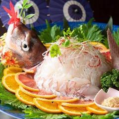 活魚 各種