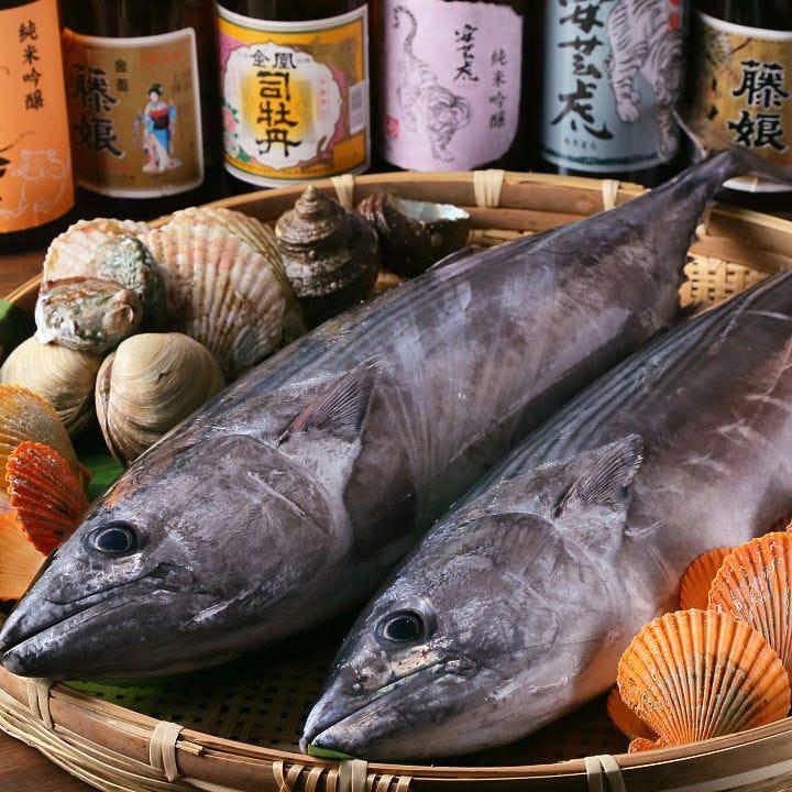 高知の漁港から新鮮魚介を直接仕入れ