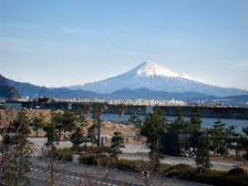 富士山が見える店内