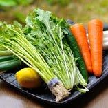 新鮮な宮城県産の地場野菜【宮城県】