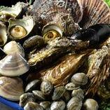 【活魚だけではない!】 牡蠣やホタテなど自慢の魚介が豊富