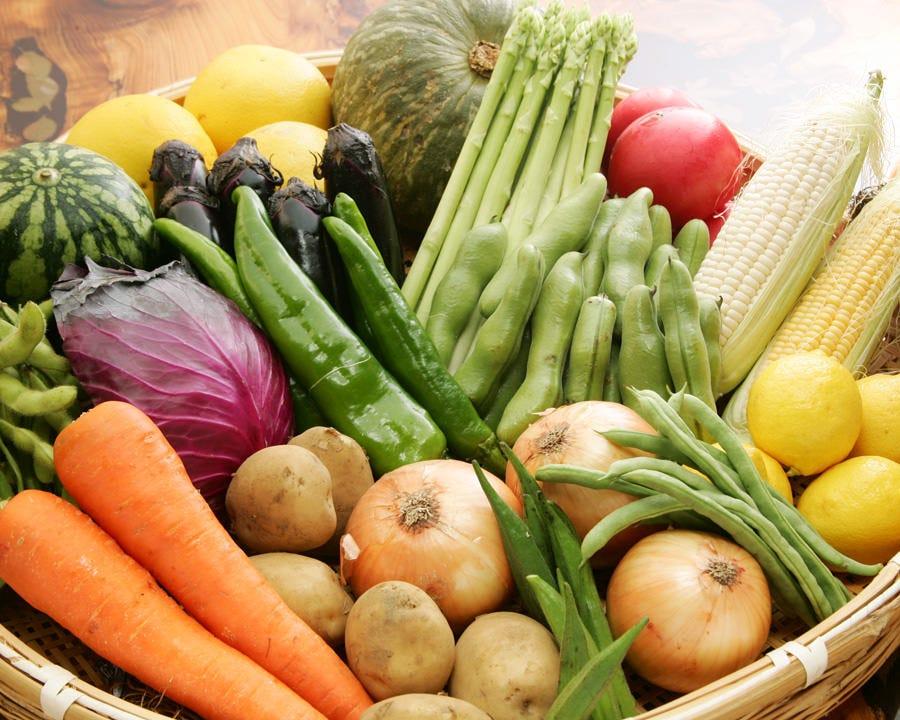 厳選された鮮度抜群の艶めく野菜を 自慢の魚介料理と共にどうぞ