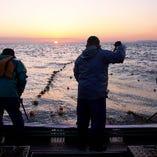 産直鮮魚【北海道】