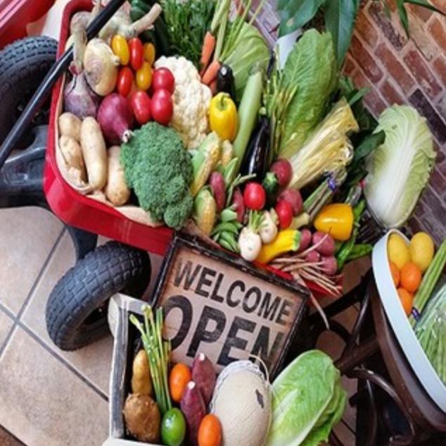 オーナー自ら買い付ける新鮮野菜